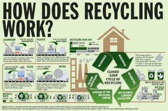 recycling-how-it-works-infographic